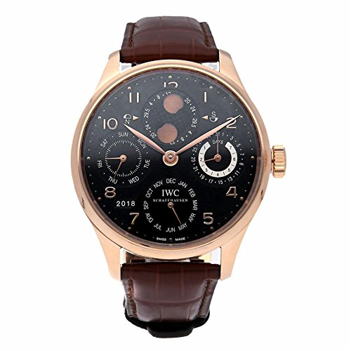 - IWC Automatic-self-Wind Male Watch IW503202 (Certified Pre-Owned)
