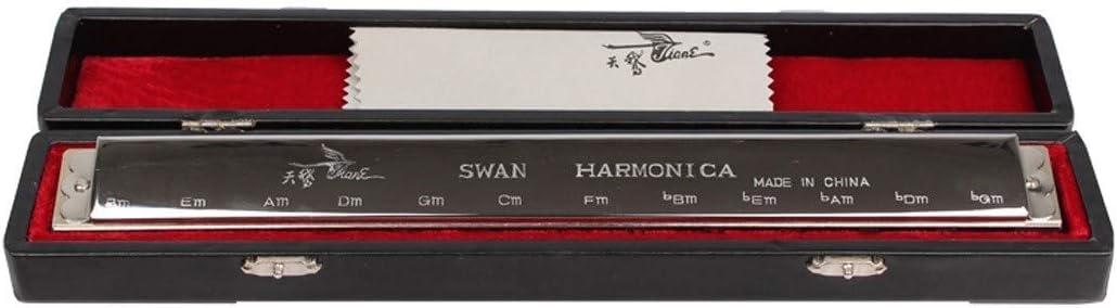 HTBHSD Cisne de la armónica de acordes Armónica 24 grupos y la ...