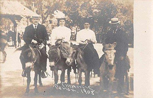 Colorado Springs Colorado Cheyenne Canon Donkey Ride Real Photo Postcard J59783 ()