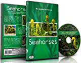 Aquarium DVD- Seahorses - with Relaxing Music and Nature Sounds
