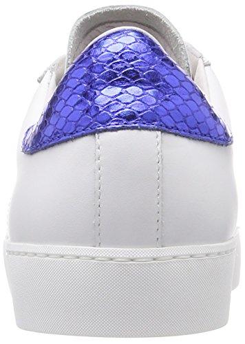 Sneaker da blu oro donna Sneakers Stokton bianco rosso Multicolor Low FRqId