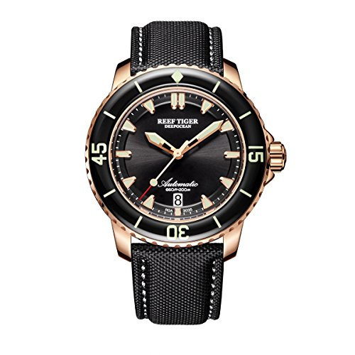Reef Tiger Super Luminous Dive Watches Mens Nylon Strap Automatic Watches with Date RGA3035 (RGA3035-PBB1)