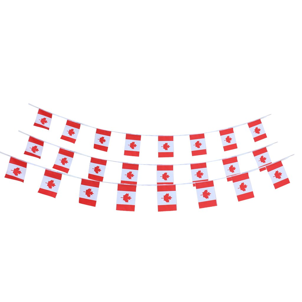 10m Canadian Country Flag String Bunting Banner Garland Outdoor Garden Decor Pack of 30Pcs Generic STK0156007369