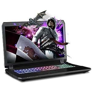 "XOTIC Sager NP8177 (Clevo P670HS-G) - 17.3"" Full HD IPS Matte Screen w/ G-Sync Gaming Laptop Intel Core i7-7700HQ GTX1070 16GB DDR4 250GB SSD 1TB HDD Win10 Kabylake Backlit Keyboard"