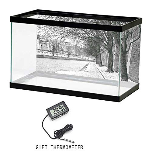 (Cusotom Fish Tank Wallpaper, Black and White Decorations, Seine River Paris France Snowy Winter in Urban City Trees, Black White Grey, 35