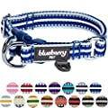 Blueberry Pet 15 Colors 3m Reflective Multi Colored Stripe Adjustable Dog Collar Blue And White Large Neck 18 26