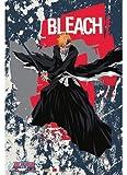 Great Eastern Entertainment Bleach Ichigo Wall Scroll, 33 by 44-Inch