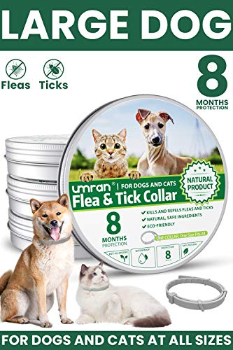 Umran Collar for Dogs & Cats