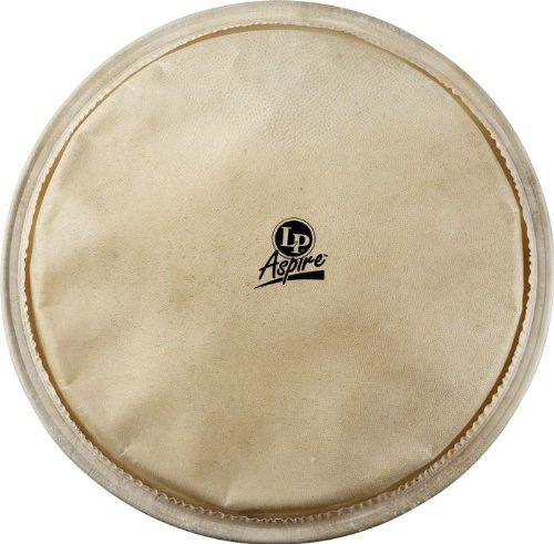 Latin Percussion LPA630A 12-1/2-Inch Aspire Djembe Head by Latin Percussion