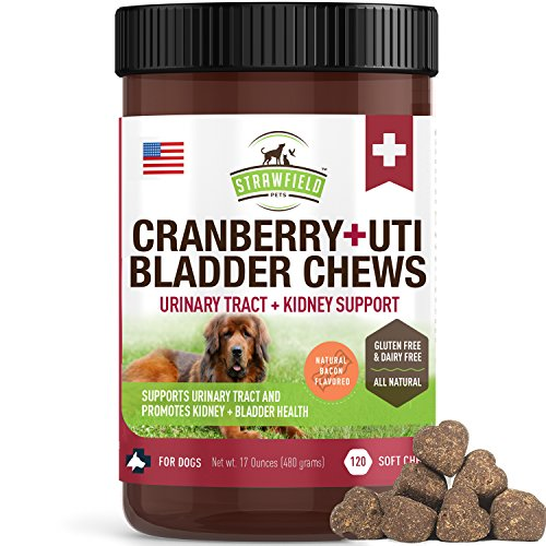 Cranberry Supplement Dog Treats - 120 Gluten-Free Soft Chews for Dogs Urinary Tract Health, UTI, Bladder Infection Kidney Support - UT Incontinence & Immune System - D-Mannose + Organic Echinacea, USA