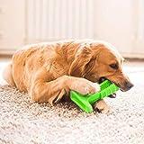 Dog Pet Toothbrush Brushing Stick for Dental Oral Care, Doggy Brush Toothbrush for Dogs, Pets Oral Care, Doggy Brushing Stick (Small, Green)
