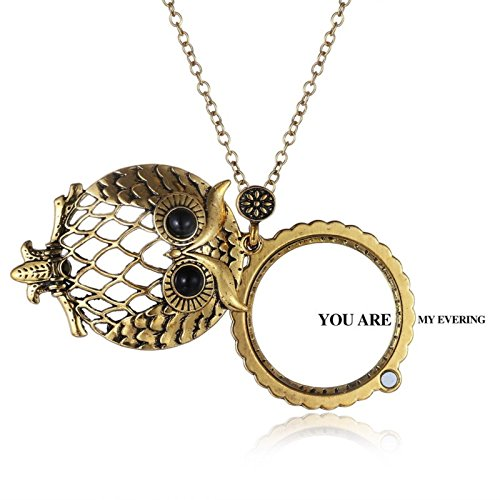 ptk12 Hollow Out Black Enemal Animal Owl Openable New Fashion Women Glass Necklaces Magnifying by ptk12