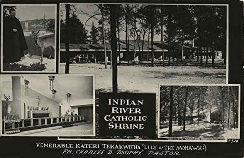 Cross in the Woods - Indian River Catholic Shrine Indian River, Michigan Original Vintage Postcard ()