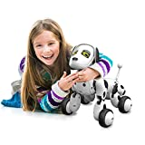 Binmer(TM) RC Smart Dog Sing Dance Walking Remote Control Robot Dog Electronic Pet