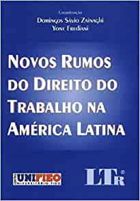 Novos Rumos Do Direito Do Trabalho Na America Latina: 9788536103938