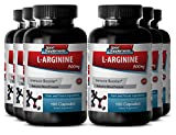 Vitamin B6 supplement - L-Arginine 500mg - Improves blood vessel vitality (6 Bottles - 600 Capsules)
