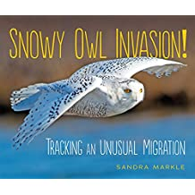 Snowy Owl Invasion!: Tracking an Unusual Migration (Sandra Markle's Science Discoveries)