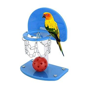 5pcs Balls Pet Birds Chew Toy Parakeet Set,UMIWE Birdie