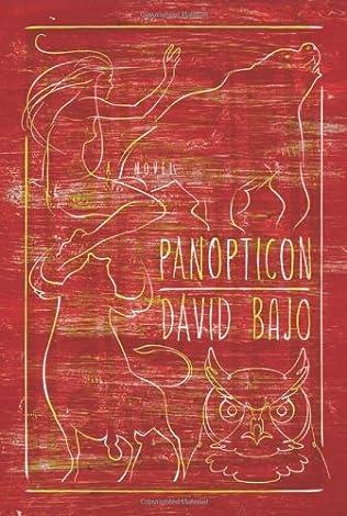 book cover of Panopticon