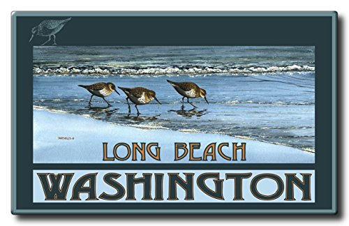 Long Beach Washington Birds At Beach Aluminum HD Metal Wall Art by Artist Dave Bartholet (22.5 x 36 inch) Art Print for Bedroom, Living Room, Kitchen, Family and Dorm Room - Long Mall California Beach