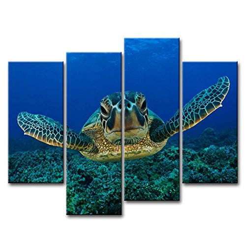 So Crazy Art Blue 4 Piece Wall Art Painting Turtle Looking Swim In The Sea Prints On Canvas The Picture Animal Pictures Oil For Home Modern Decoration Print Decor (Turtle Picture)