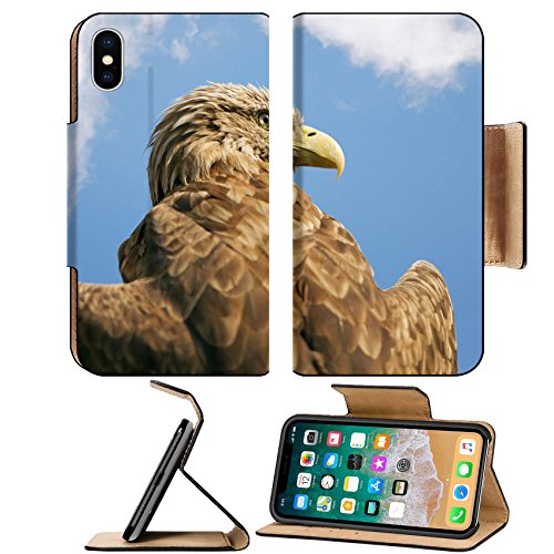 Liili Premium Apple iPhone X Aluminum Snap Case eagle with outspread wings against the blue sky IMAGE ID 18390637 Eagle Group Snap