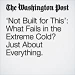 'Not Built for This': What Fails in the Extreme Cold? Just About Everything. | Steve Hendrix,Theresa Vargas