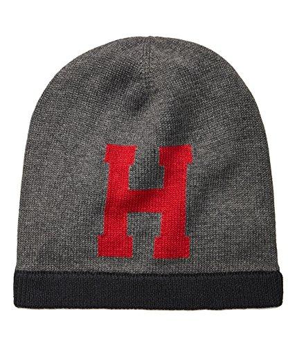 Knit Logo Beanie Hat Gray O/S (Logo Beanie Hat)