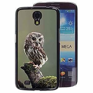 A-type Arte & diseño plástico duro Fundas Cover Cubre Hard Case Cover para Samsung Galaxy Mega 6.3 (Owl Baby Cute Feathers Blurry Nature)