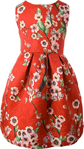 Ipuang Big Girls' Lovely Flower Pattern Dresses for Special Occasions 8 Red