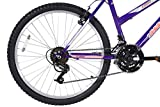 Dynacraft Magna Front Shock Mountain Bike Girls 24