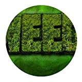 weed mouse pad - weed is knowledge Weed and dope Round Mousepad