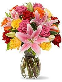 Amazon.com: Fresh Flowers & Live Indoor Plants: Grocery & Gourmet ...