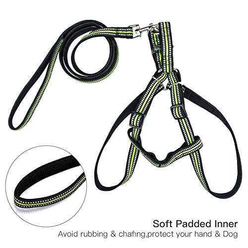 Zoto No Pull Dog Harness Lead Set Nylon Padded Reflective Lead Tape