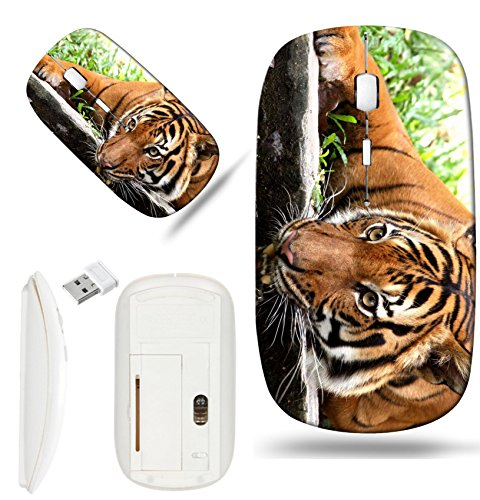 Refreshing Drink Design - Luxlady Wireless Mouse White Base Travel 2.4G Wireless Mice with USB Receiver, 1000 DPI for notebook, pc, laptop, macdesign IMAGE ID: 392932 taking a refreshing drink from a river moat to cool off