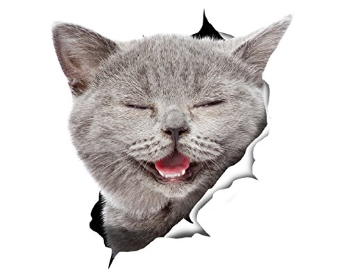 Winston & Bear 3D Cat Stickers - 2 Pack - Laughing Grey Cat