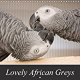 Lovely African Greys 2018: Unique Photos of Beautiful Grey Parrots (Calvendo Animals)