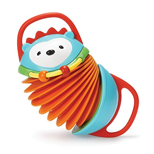 Skip Hop Explore and More Musical Hedgehog Accordion Activity Toy, Multi