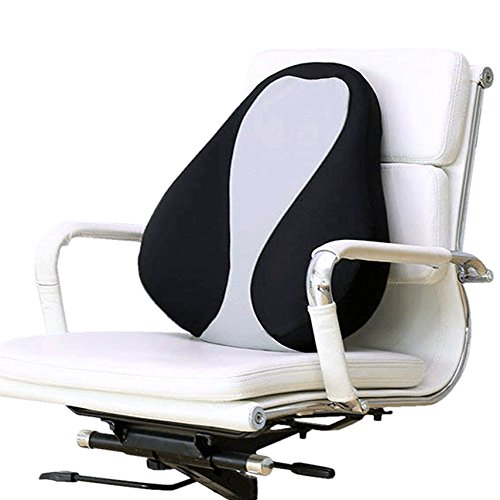 Arch Back Chair - Lumbar Support Back Pillow - Premium Quality Memory Foam - Improves Posture Relieves Pain - Removable Cover for Washing (Bird's Eye)