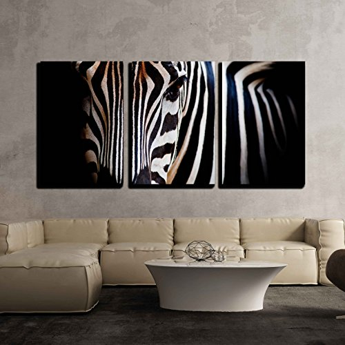 wall26 - 3 Piece Canvas Wall Art - a Headshot of a Burchell - Modern Home Decor Stretched and Framed Ready to Hang - 16