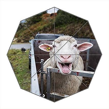 Viaje umbralla-windproof compacto paraguas plegable portátil con marco reforzado, 8 varillas & –