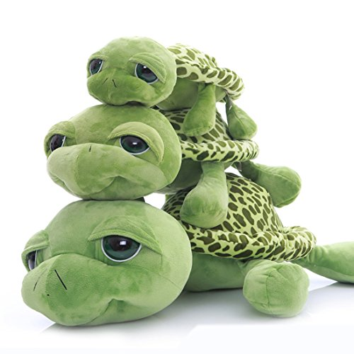 Turtle Holds - 1