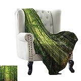 RenteriaDecor Woodland Decor,Lightweight Blanket Deciduous Forest in Summertime Foliage Sunlight...