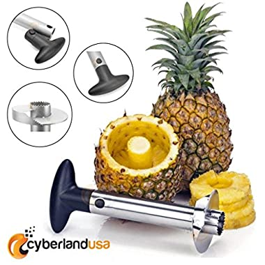 [LIFETIME GUARANTEE] Stainless Steel Cutting Blade Pineapple Easy Peeler Slicer and De-Corer - 3 in 1 Tool (Black)