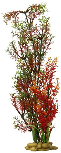 "Aquarium Plant Decoration - Micro Ludwigia Aquarium Plant for Fresh and Salt Water, Low Maintenance Safe and Non-Toxic Fish Tank Decor, Fish Tank Artificial Plant Decor, 15"", Green/Red by Aquatic Creation"