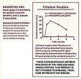 Interceuticals Better Curcumin - Theracurmin