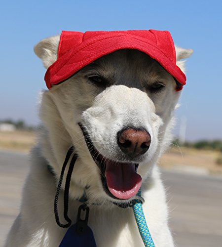 (LoveWally Dog Outdoor PET Hat ♦ Adjustable Authentic Colors (Medium, Red))