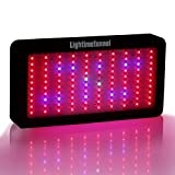 Lightimetunnel LED Grow Light Panel Full Spectrum 300w for Hydroponics Indoor Plants Veg Flower Review