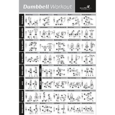 Dumbbell Workout Exercise Poster - NOW LAMINATED - Strength Training Chart - Build Muscle, Tone & Tighten - Home Gym Weight Lifting Routine - Body Building Guide w/ Free Weights & Resistance