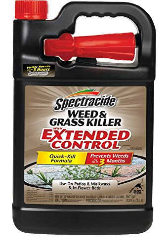 Spectracide Weed & Grass Killer with Extended Control, Ready